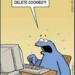 Delete Cookies ?